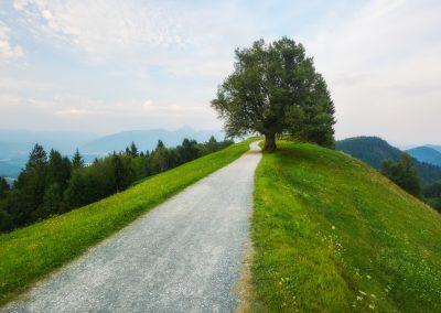 Slovinsko - cesta