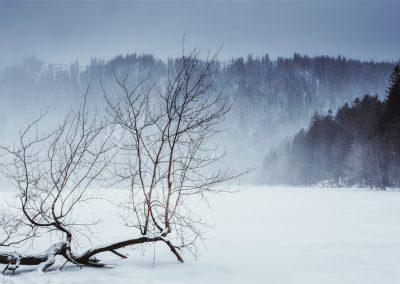 Šumava - Černé jezero