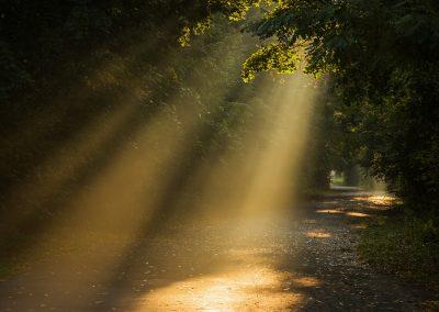 svítání - Tyndallův jev