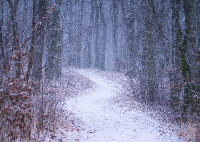 zasněženou cestou
